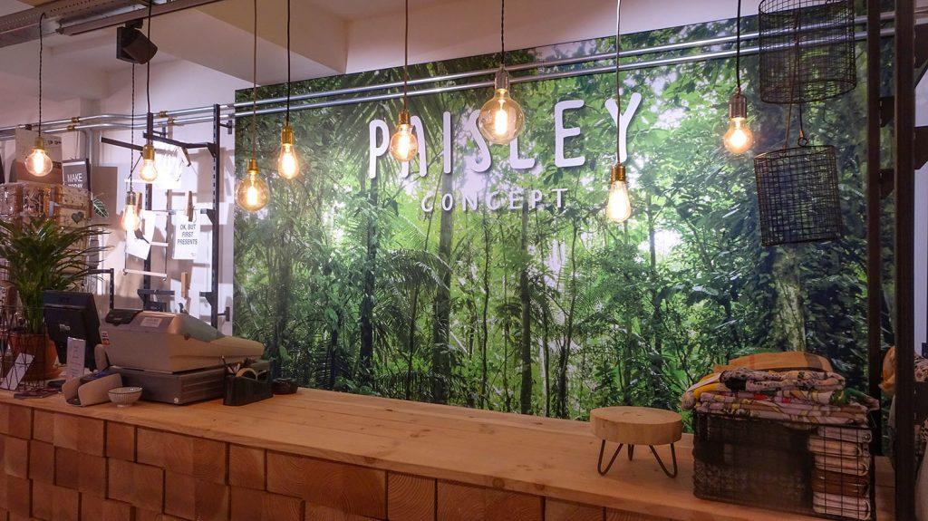 Paisley Concept